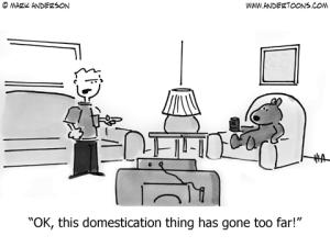 dogdomestication