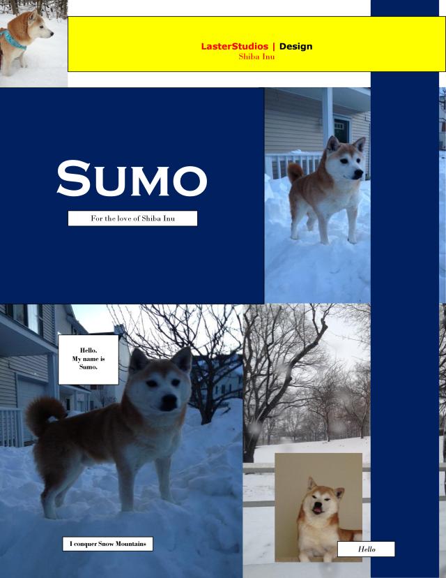 Sumo2013